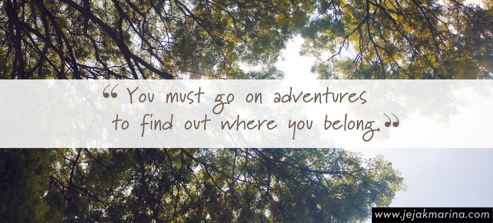 What I Have Learned Solo Travel quote