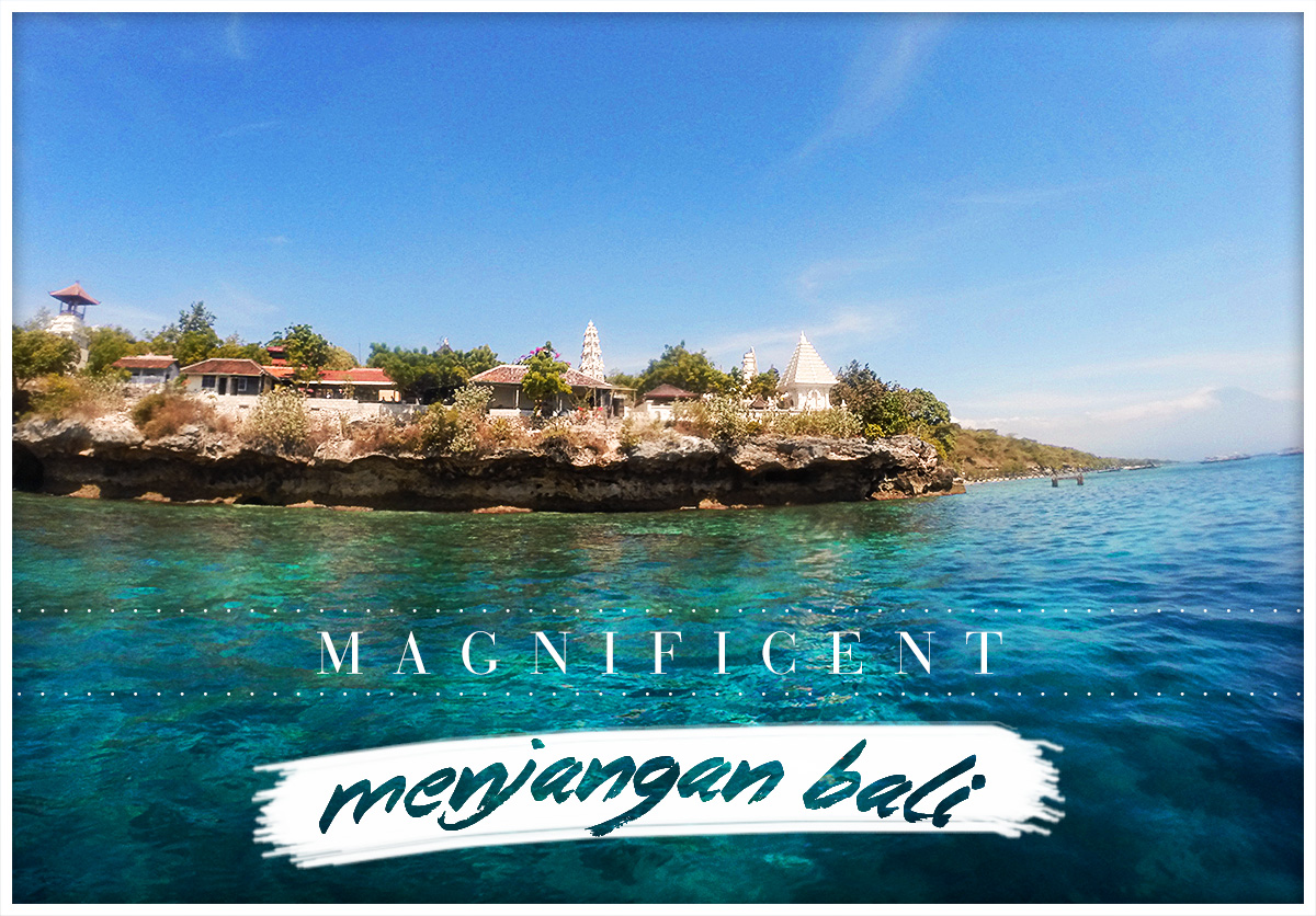 The Magnificent Menjangan Bali Guide