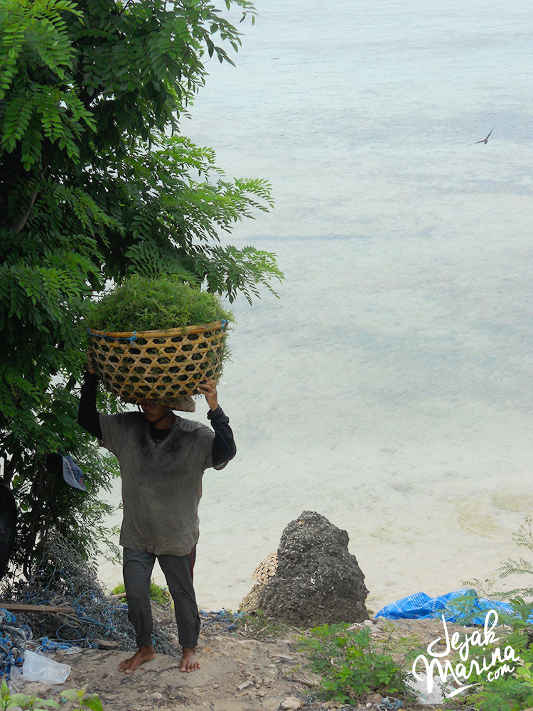 Nusa Lembongan Travel Guide: Getaway from Bali!