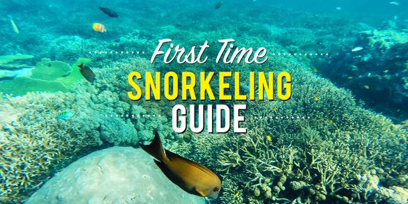 First Time Snorkelling Guide - featured