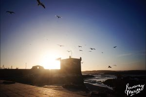 Things to Do in Essaouira, Morocco