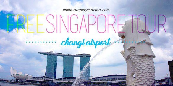 Changi Airport: Free Singapore Tour Review