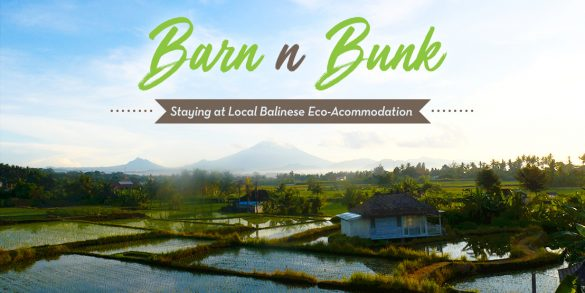 Barn n Bunk, Real Local Eco Accomodation in Bali